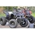 Atv Nitro Motors Grizzly 125Cc 3G8-3 Viteze+Revers