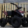 ATV Electric NITRO Eco Trio 350W 24V recomandat pentru copil 3-8 ani #porto