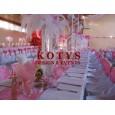 huse scaune, esarfe fete de mese pentru evenimente(nunti, botezuri, etc)